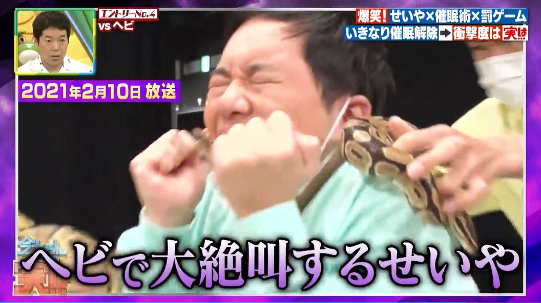 ヘビを見て絶叫するせいや