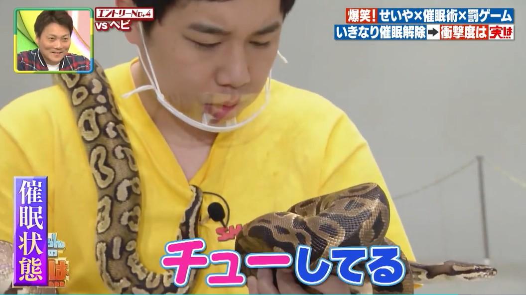 ヘビを可愛いと感じるようになるせいや2