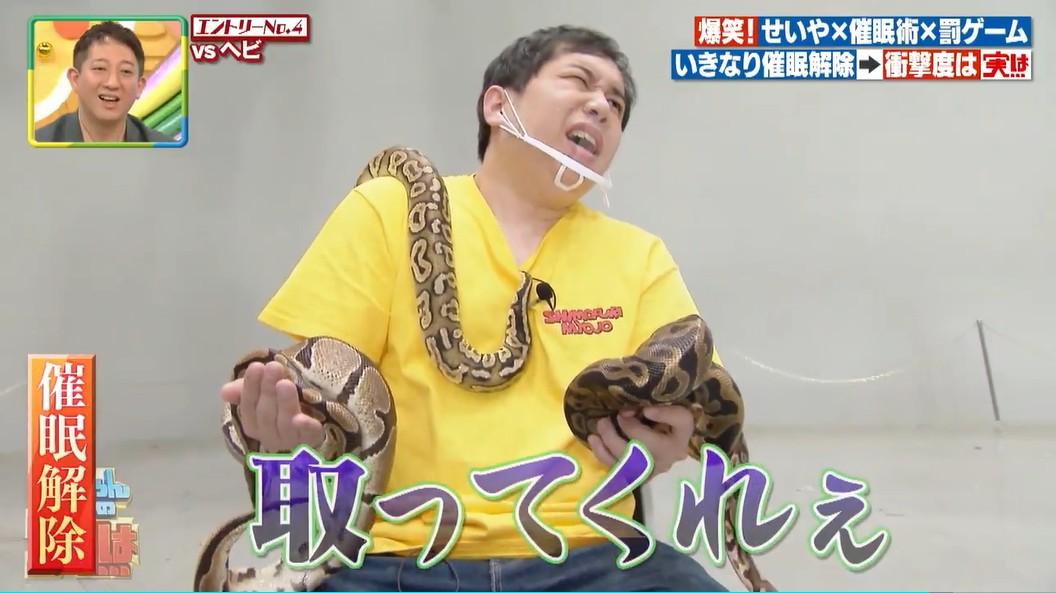 催眠が解けてヘビに恐怖を覚えるせいや